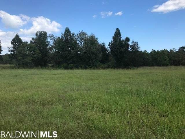 Balsam Creek Drive, Elberta, AL 36530 (MLS #289365) :: Ashurst & Niemeyer Real Estate