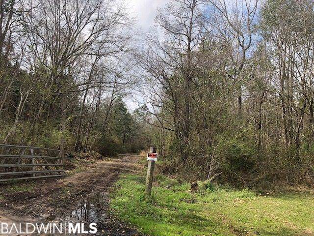 75 Point Escambia Circle, Atmore, AL 36350 (MLS #289850) :: Ashurst & Niemeyer Real Estate
