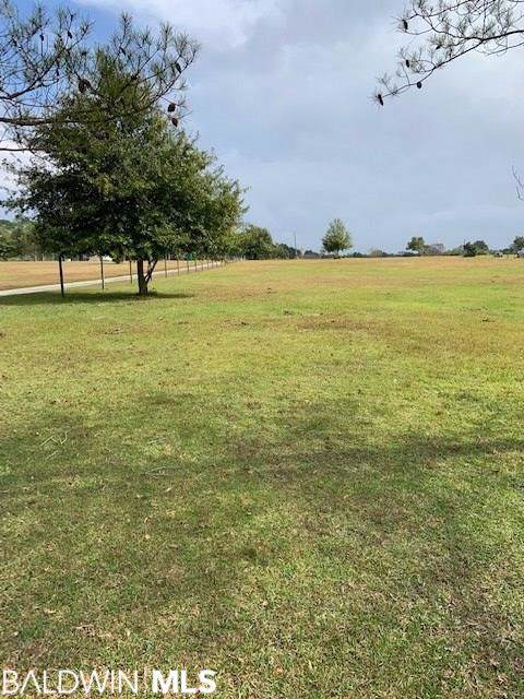 13414 County Road 91, Elberta, AL 36530 (MLS #292239) :: JWRE Powered by JPAR Coast & County