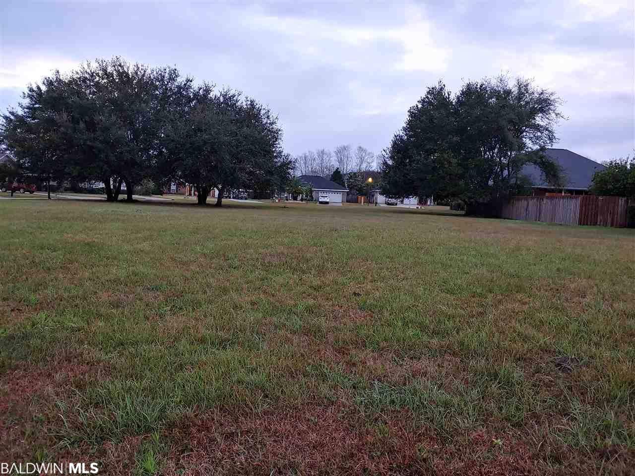 0 Ancient Oaks Circle - Photo 1