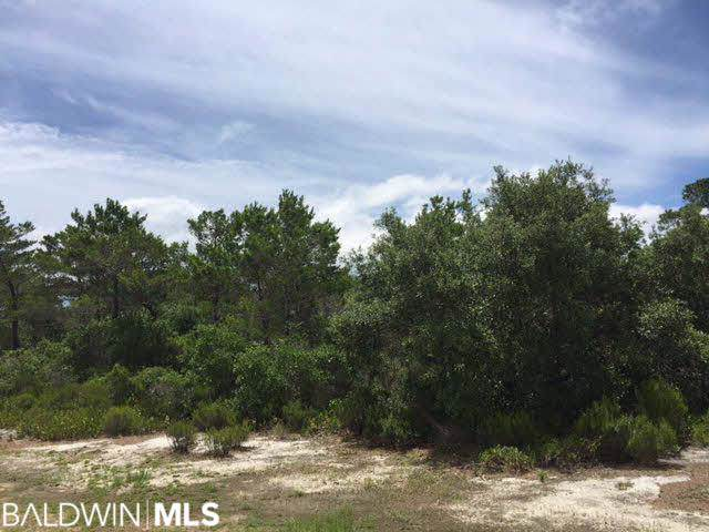 0 Ono North Loop West, Orange Beach, AL 36561 (MLS #293903) :: Gulf Coast Experts Real Estate Team