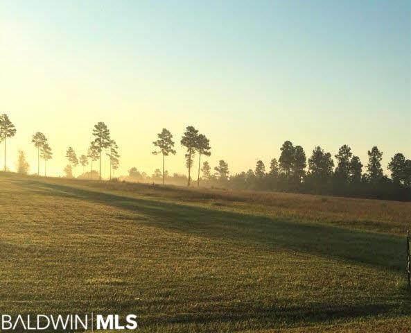 0 Dogwood Rd, Brewton, AL 36426 (MLS #294474) :: Elite Real Estate Solutions