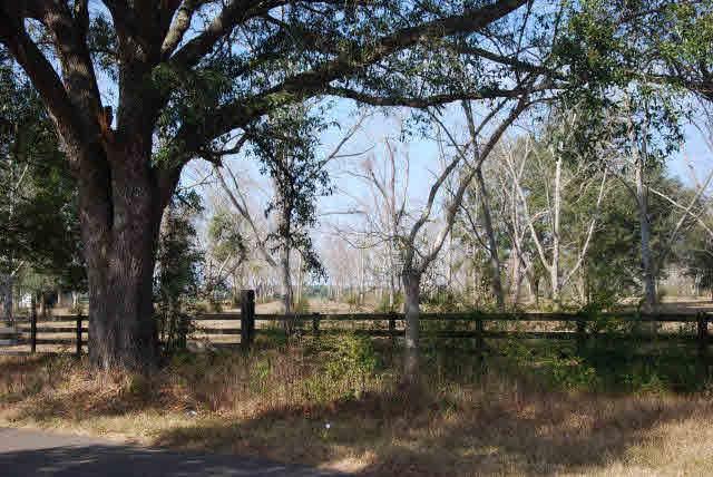 0 S Holston Lane, Silverhill, AL 36576 (MLS #295054) :: Gulf Coast Experts Real Estate Team