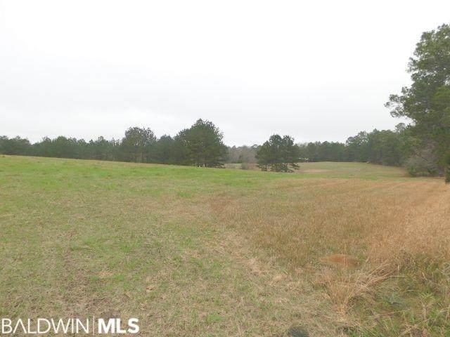 68000-A Blk Scranage Rd, Atmore, AL 36502 (MLS #295072) :: JWRE Powered by JPAR Coast & County