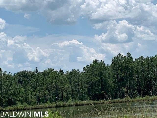 21330 County Road 68, Robertsdale, AL 36567 (MLS #296189) :: JWRE Powered by JPAR Coast & County