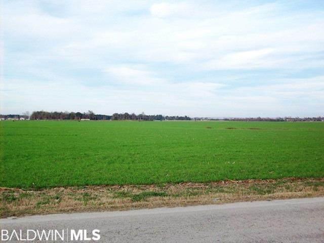 1700 BLk N Highway 21, Atmore, AL 36502 (MLS #296330) :: Ashurst & Niemeyer Real Estate