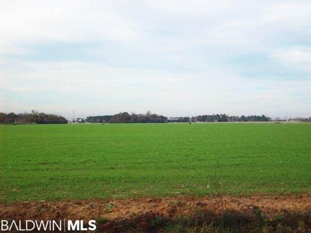 1800 Blk N Highway 21, Atmore, AL 36502 (MLS #296365) :: Ashurst & Niemeyer Real Estate
