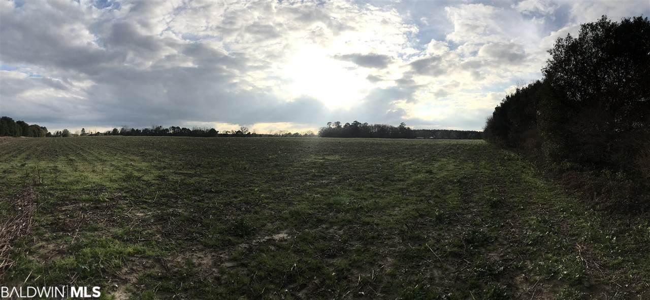 0 County Road 62 - Photo 1