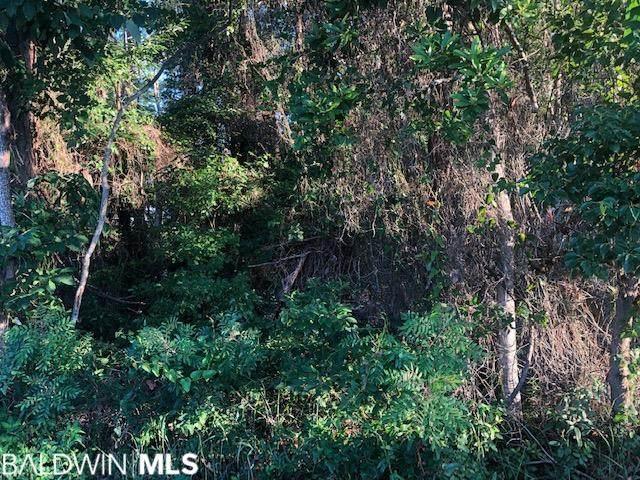 0 Browns Landing Road, Seminole, AL 36574 (MLS #299505) :: JWRE Powered by JPAR Coast & County