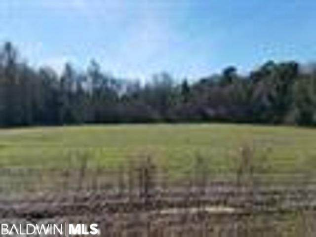 0 County Road 64, Loxley, AL 36551 (MLS #299845) :: Bellator Real Estate and Development