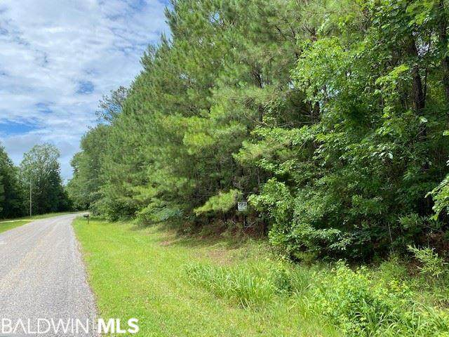 0 Hank Williams Rd, McKenzie, AL 36456 (MLS #300000) :: Levin Rinke Realty