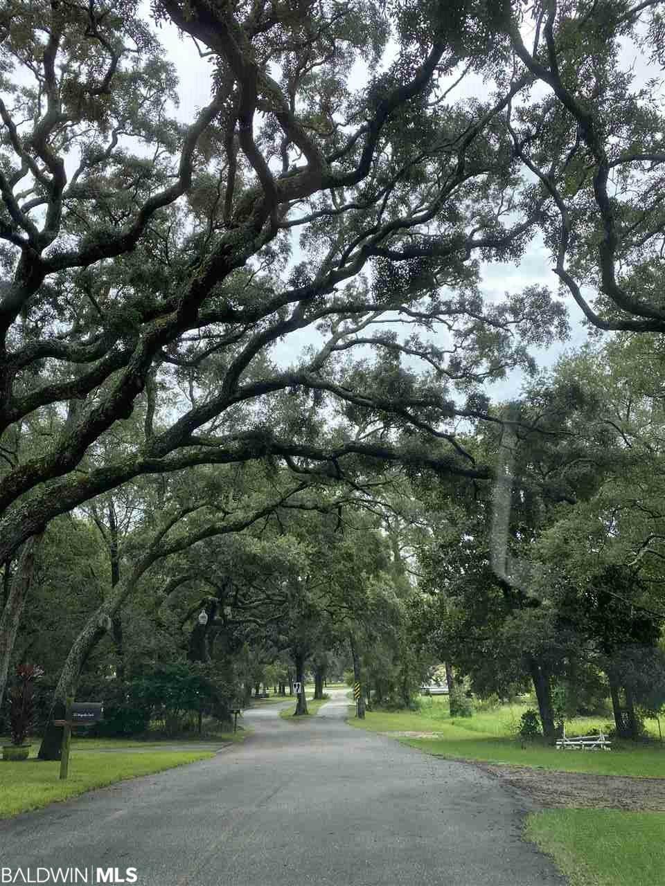 317 Magnolia Drive - Photo 1