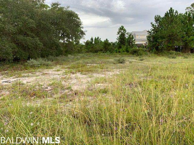135 W 6th Avenue, Gulf Shores, AL 36542 (MLS #303597) :: Levin Rinke Realty