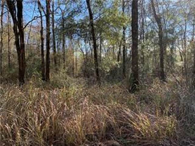 0 C C Trail, Satsuma, AL 36609 (MLS #303668) :: Dodson Real Estate Group