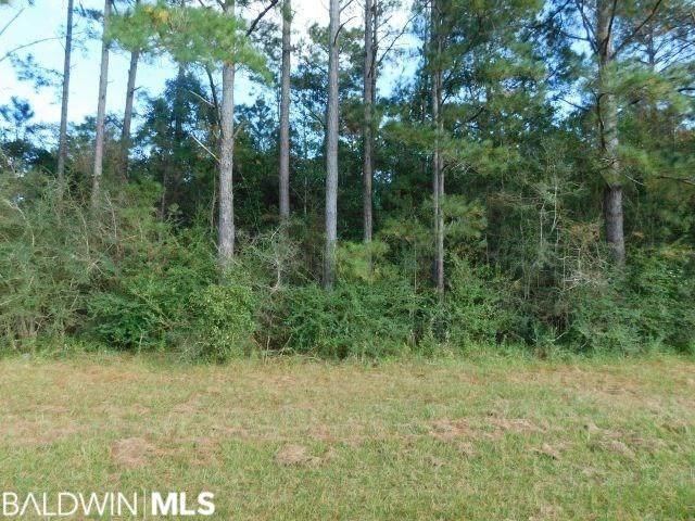 4900 Blk Highway 97, Walnut Hill, FL 32568 (MLS #306157) :: Levin Rinke Realty