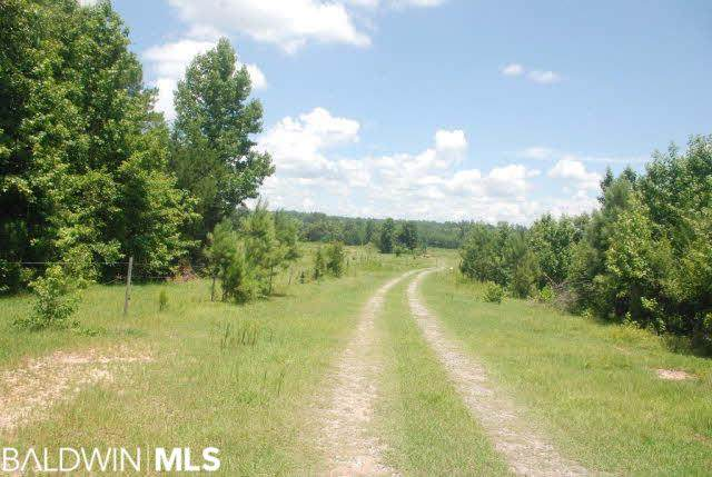 0 Us Highway 31, Castleberry, AL 36432 (MLS #307784) :: Elite Real Estate Solutions