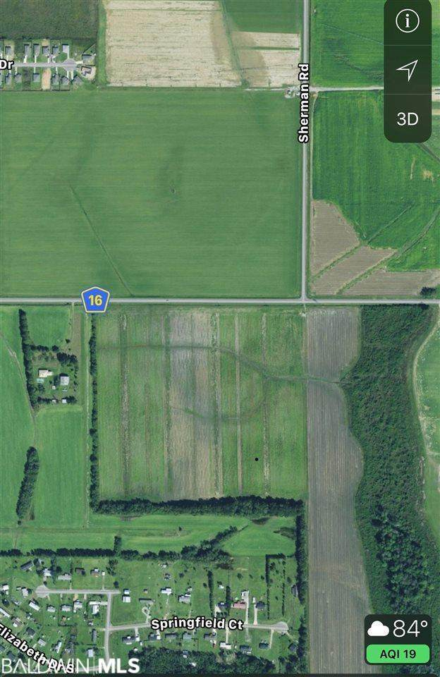 0 County Road 16, Foley, AL 36535 (MLS #309659) :: Elite Real Estate Solutions