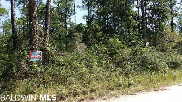 0 Pine Top Rd, Coden, AL 36523 (MLS #310372) :: Coldwell Banker Coastal Realty