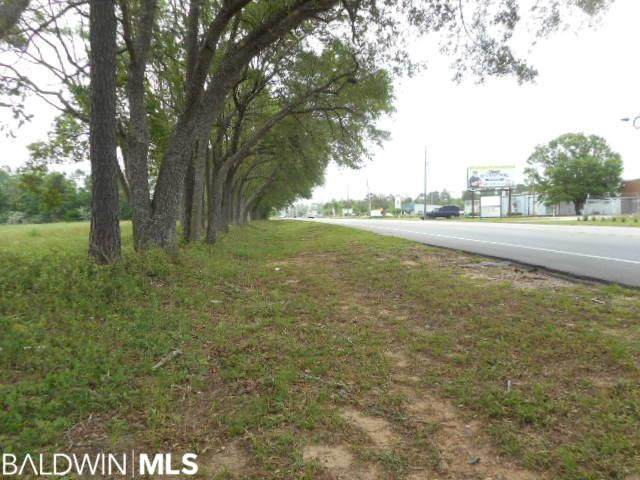 12538 Bodenhamer Road, Foley, AL 36535 (MLS #313179) :: JWRE Powered by JPAR Coast & County
