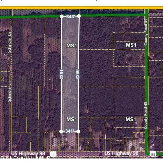 12850 Schindler Ln, Foley, AL 36535 (MLS #313398) :: Sold Sisters - Alabama Gulf Coast Properties