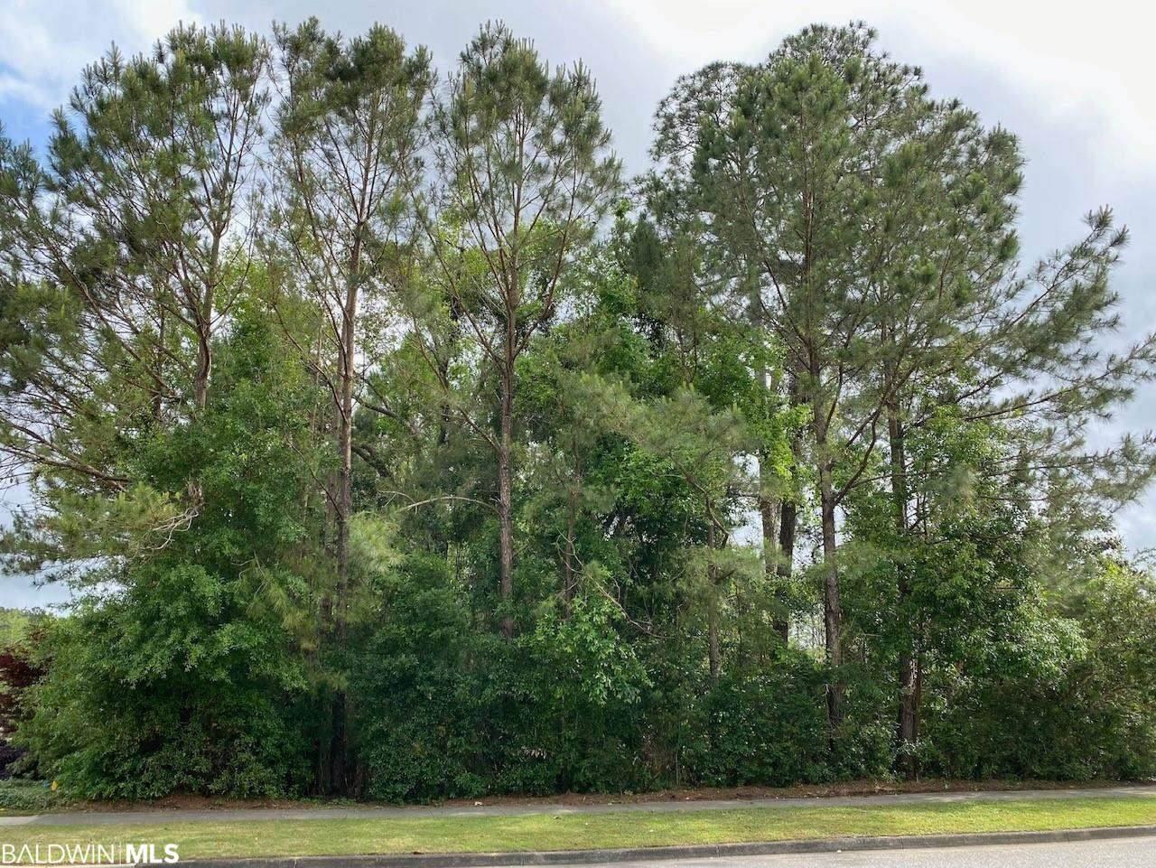 8447 Pine Run - Photo 1