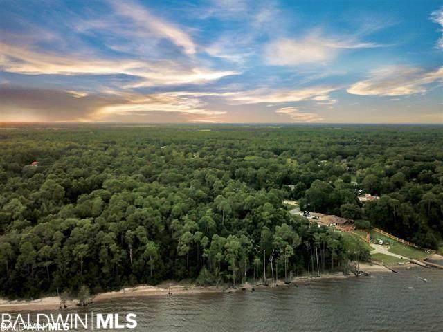 10404 County Road 99, Lillian, AL 36549 (MLS #314245) :: Elite Real Estate Solutions