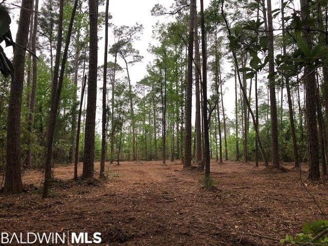 9425 S Bay Road, Foley, AL 36535 (MLS #314830) :: Gulf Coast Experts Real Estate Team