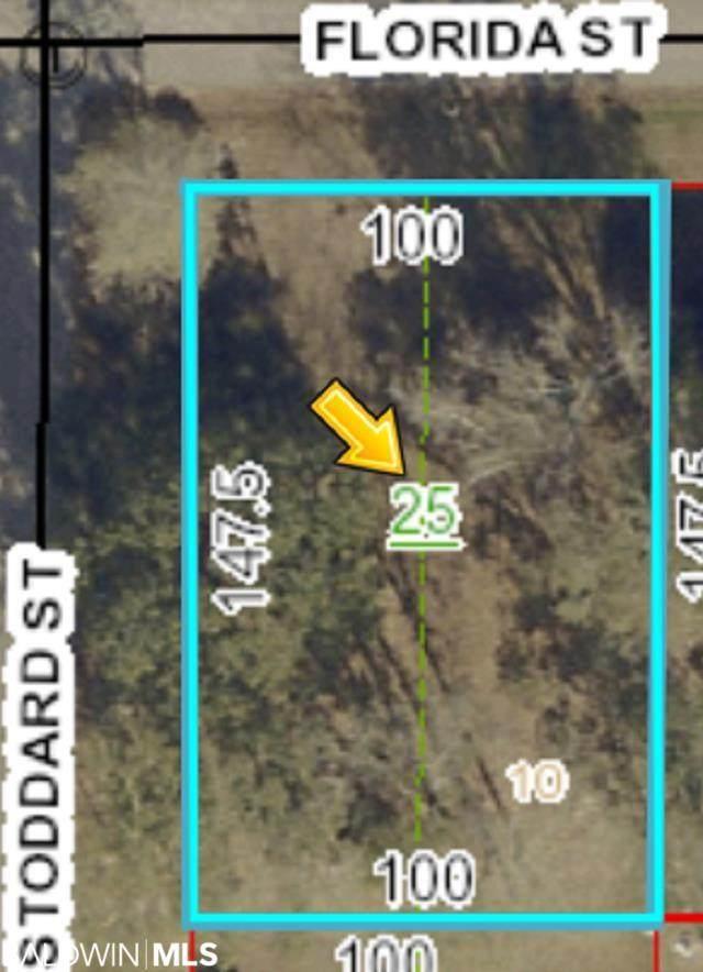 0 Stoddard Street, Robertsdale, AL 36567 (MLS #314933) :: Dodson Real Estate Group