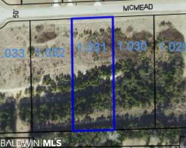 0 Mcmead Drive, Brewton, AL 36426 (MLS #315523) :: RE/MAX Signature Properties