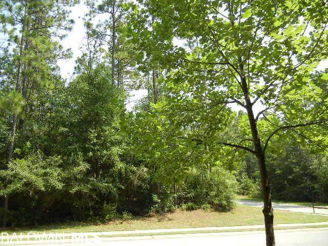 0 Camden Way, Fairhope, AL 36532 (MLS #316878) :: Elite Real Estate Solutions