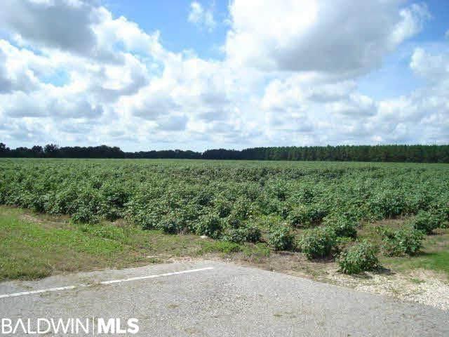 0 Baldwin Beach Express, Summerdale, AL 36580 (MLS #317044) :: Elite Real Estate Solutions