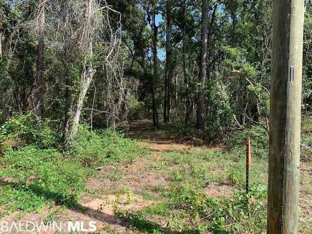 9 Plaza Bianco, Lillian, AL 36549 (MLS #319296) :: Alabama Coastal Living