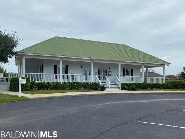 22765 S Lake South Drive, Foley, AL 36535 (MLS #320018) :: HergGroup Gulf Coast