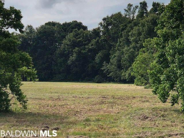 7810 Naulty Lane, Fairhope, AL 36532 (MLS #320050) :: Mobile Bay Realty