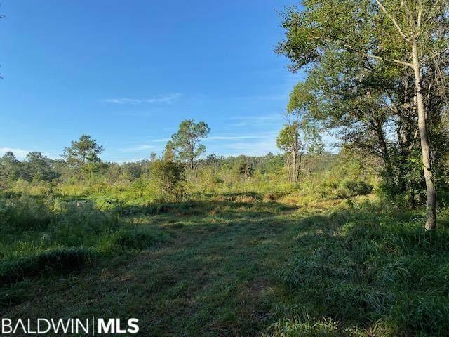 20001 East Blvd, Silverhill, AL 36576 (MLS #321499) :: Sold Sisters - Alabama Gulf Coast Properties