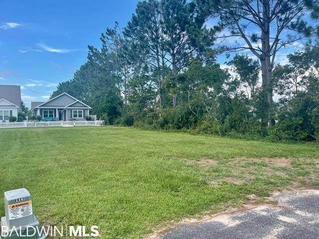 0 Pink Poppy Lane, Foley, AL 36535 (MLS #321662) :: Gulf Coast Experts Real Estate Team