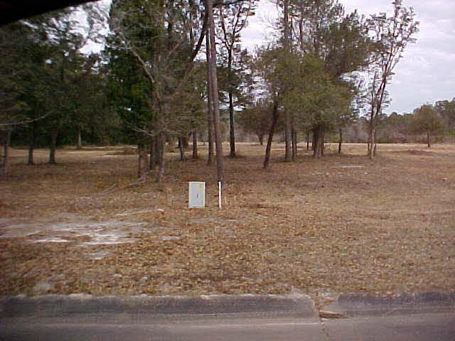 0 NO Highway 59, Gulf Shores, AL 36542 (MLS #199619) :: Elite Real Estate Solutions