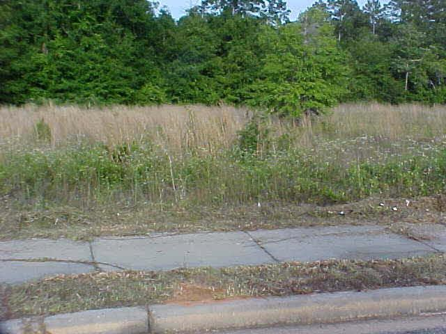 0 SO Alamo Circle, Gulf Shores, AL 36542 (MLS #199636) :: Gulf Coast Experts Real Estate Team