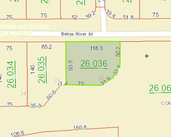 0 Belize River Street, Fairhope, AL 36532 (MLS #210196) :: Elite Real Estate Solutions