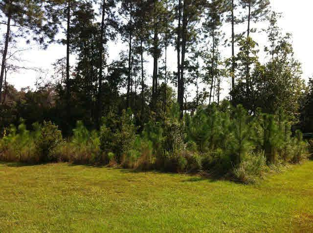 0 Etta Smith Rd, Summerdale, AL 36580 (MLS #210925) :: Gulf Coast Experts Real Estate Team