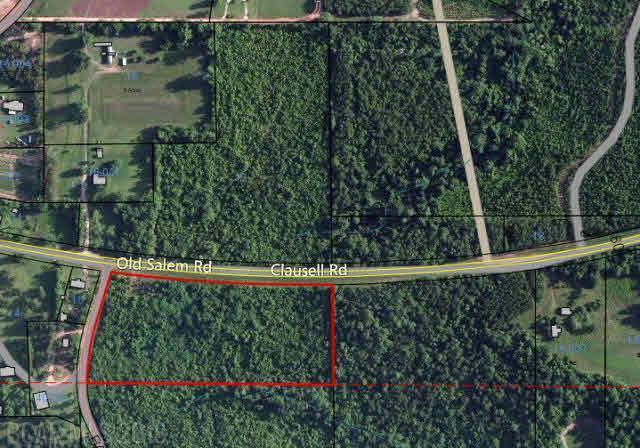 2 Old Salem Road, Monroeville, AL 36460 (MLS #229567) :: Elite Real Estate Solutions