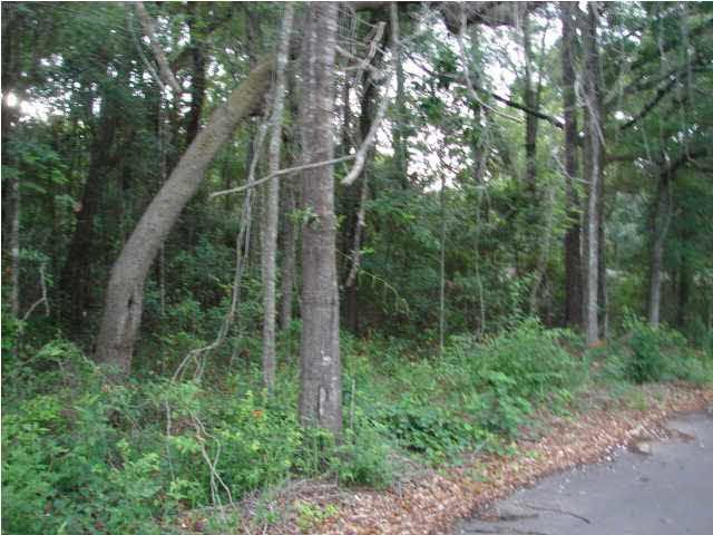 0 Holly Street, Magnolia Springs, AL 36555 (MLS #230249) :: Gulf Coast Experts Real Estate Team