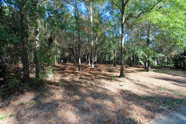 127 Willow Lake Drive, Fairhope, AL 36532 (MLS #231180) :: The Kim and Brian Team at RE/MAX Paradise
