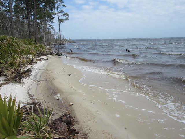 0 Boykin Blvd, Lillian, AL 36549 (MLS #236812) :: Gulf Coast Experts Real Estate Team