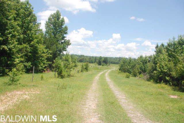 0 Us Highway 31, Castleberry, AL 36432 (MLS #242255) :: Elite Real Estate Solutions