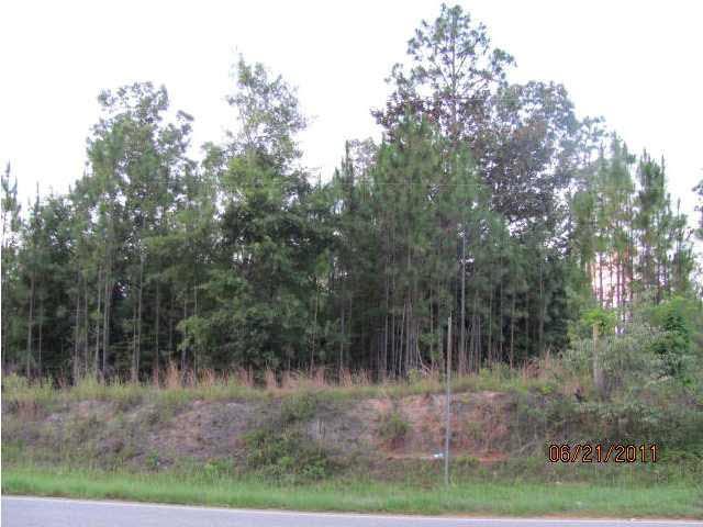 0 Salco Road, Chunchula, AL 36521 (MLS #246061) :: Gulf Coast Experts Real Estate Team