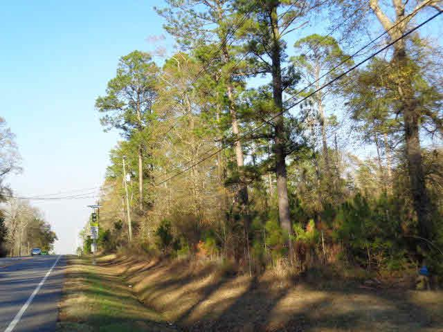 0 Tesone Blvd, Brewton, AL 36502 (MLS #248235) :: Elite Real Estate Solutions