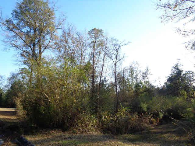 0 Tesone Blvd, Brewton, AL 36502 (MLS #248236) :: Gulf Coast Experts Real Estate Team