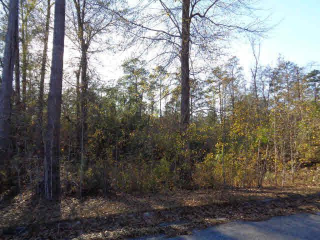 0 Tesone Blvd, Brewton, AL 36502 (MLS #248246) :: Gulf Coast Experts Real Estate Team