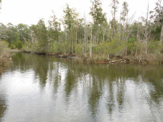 0 Soldier Creek Rd, Lillian, AL 36549 (MLS #248605) :: Gulf Coast Experts Real Estate Team